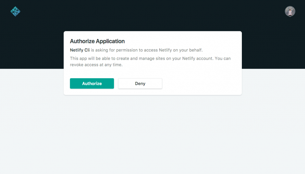 Netlify Auth Grant